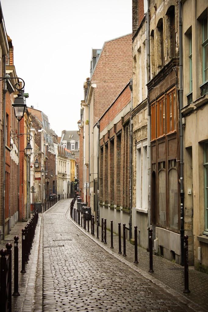 France - Lille - Vika-2705.jpg