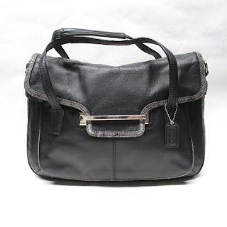 Coach Python Detail Bag
