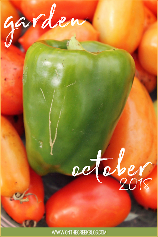 Garden | October 2018 // Roma tomatoes & green peppers