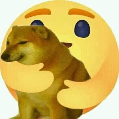 Ảnh chế Facebook reaction Thương Thương chó cậu vàng em đẹp lắm
