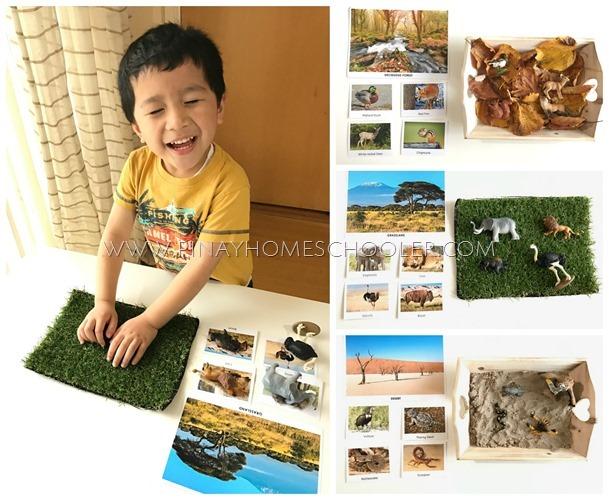 Hands-on Learning on Animal Habitats for Preschool
