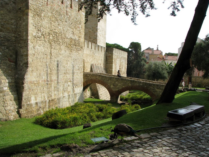 IMG_1040 - Lisbon castle
