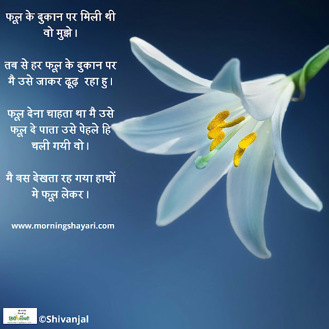 phool, flower, phool shayari, flower image, phool pick, garden shayari