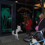 Jonge Hond centrum Emmen - 2012-04-01%2B049.JPG