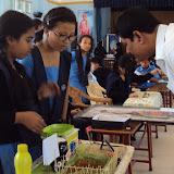 Science-Exhibition (3).JPG