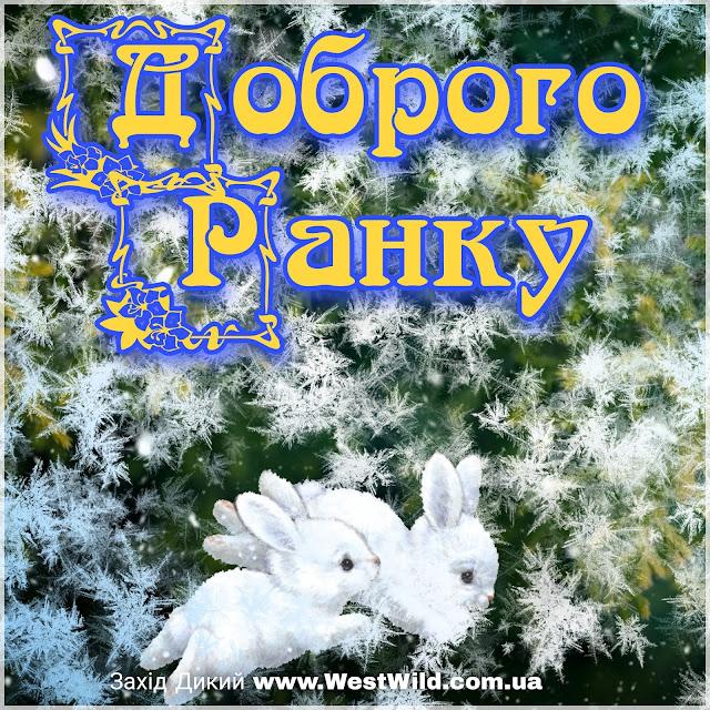 Привітання доброго зимового ранку