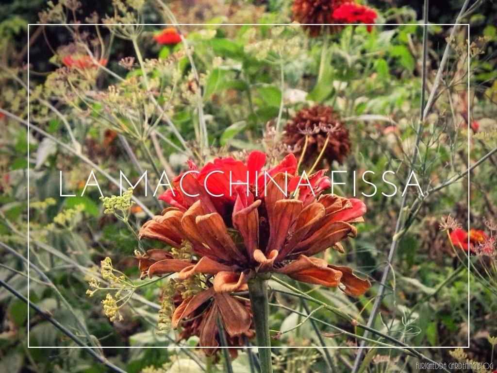 [La+Macchina+Fissa+13%5B8%5D]