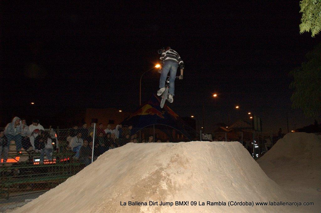 Ballena Dirt Jump BMX 2009 - BMX_09_0175.jpg