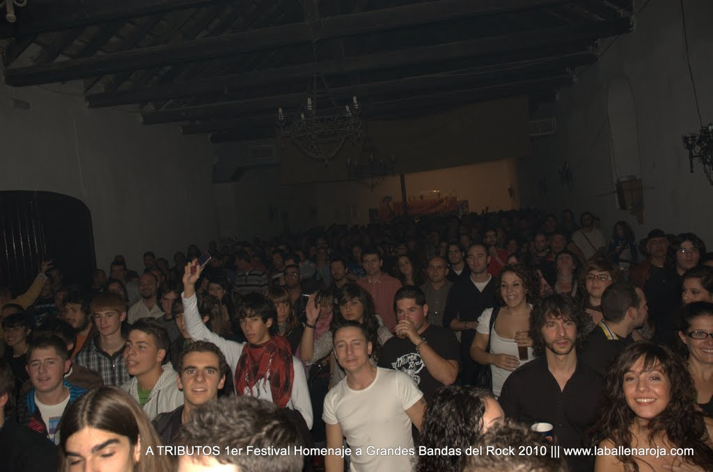 A TRIBUTOS 1er Festival Homenaje a Grandes Bandas del Rock 2010 - DSC_0020.jpg