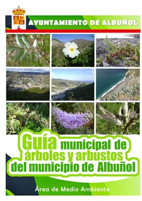 Guía municipal de árboles y arbustos