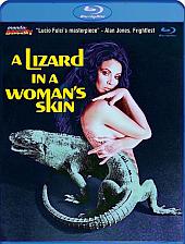 Lizard[3]