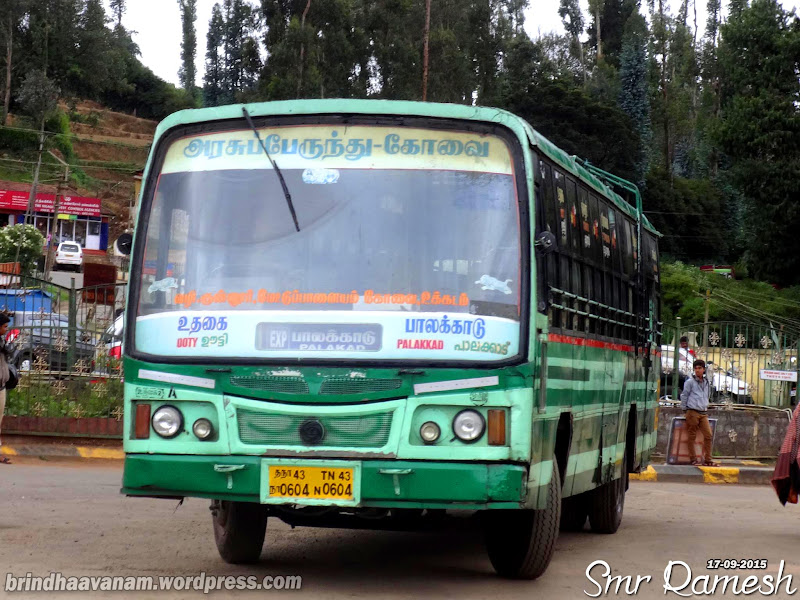Greenbelt Bowl ⁓ Try These Mettupalayam Bus Stand To Ooty