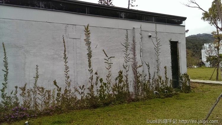 大溪老茶廠-草畫牆