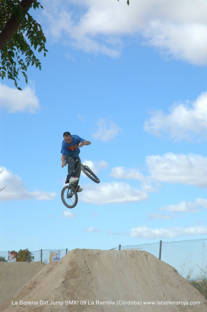 Ballena Dirt Jump BMX 2009 - BMX_09_0012.jpg