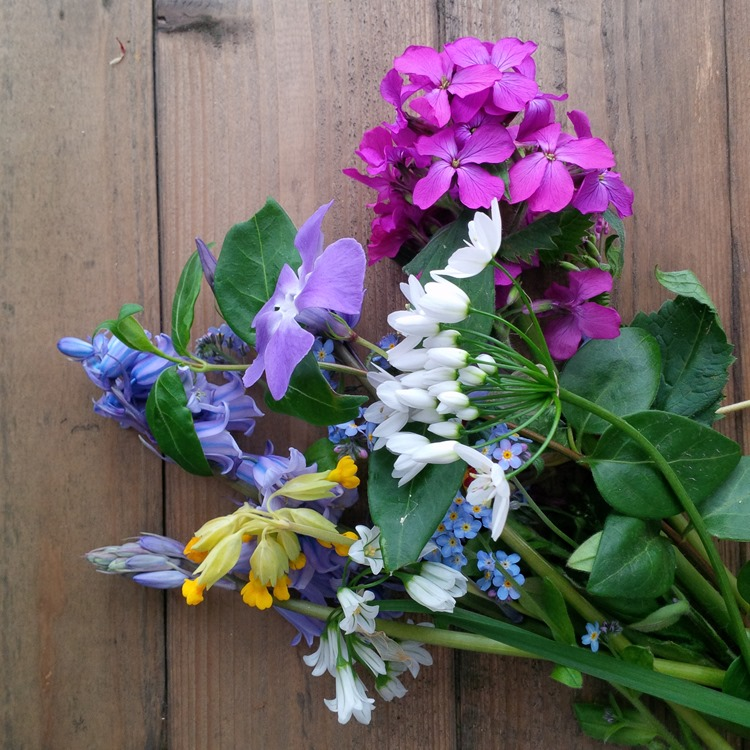 foraged wildflowers