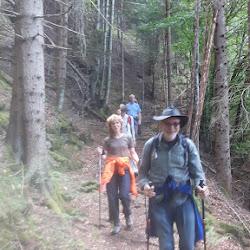 Wanderung Steinegg 05.06.17 (4).jpg