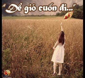 Để gió cuốn đi VTC HD1