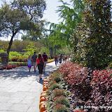 10-26-14 Dallas Arboretum - _IGP4333.JPG