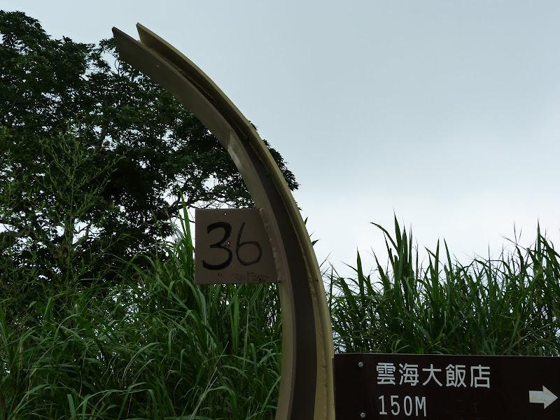 De Shanmei a Rueili via Chiayi en scooter, J 17 - P1190380.JPG