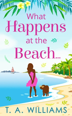 French Village Diaries book review What Happens at the Beach T A Williams