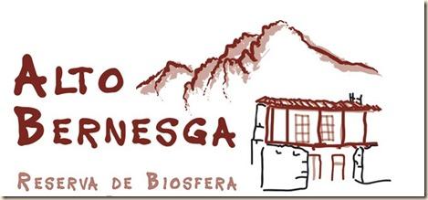 thumbnail_logo_alto_bernesga (1)
