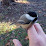 Paul Molnar's profile photo