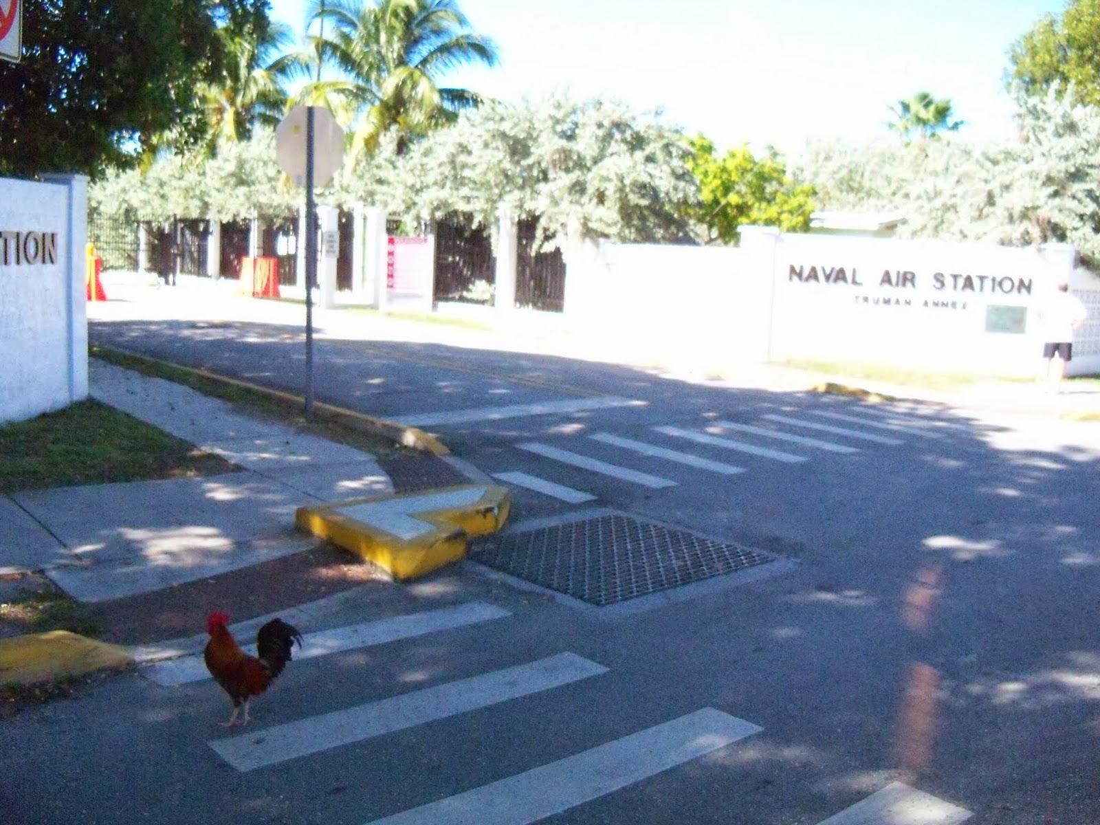 Key West Vacation - 116_5820.JPG