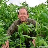 Dutch Harvest field update #4