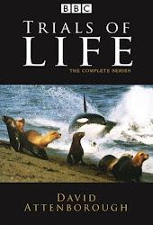 The Trials of Life 1990 -Những Thử Thách Của Sự Sống