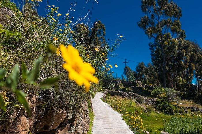 Titicaca29.jpg