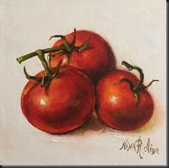 Tomatoes on vine 2
