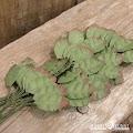 Mathia: Grønne blader 25mm - 50stk