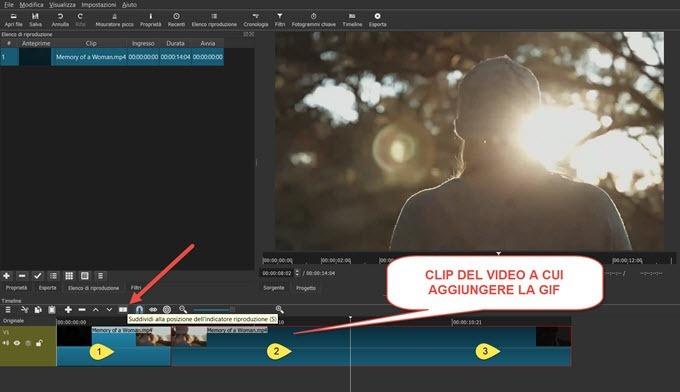 clip-del-video-a-cui-aggiungere-la-gif