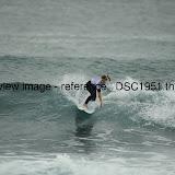 _DSC1951.thumb.jpg