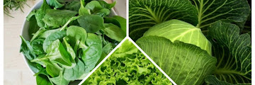 5 Best Choices of Vegetables for Diet