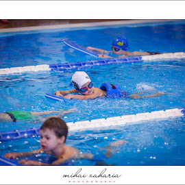 20161217-Little-Swimmers-IV-concurs-0072