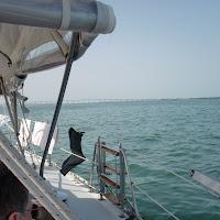 Seabase 2012 - 2012%7E07%7E29 22.jpg