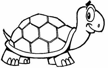Tortugas Para Imprimir Y Colorear