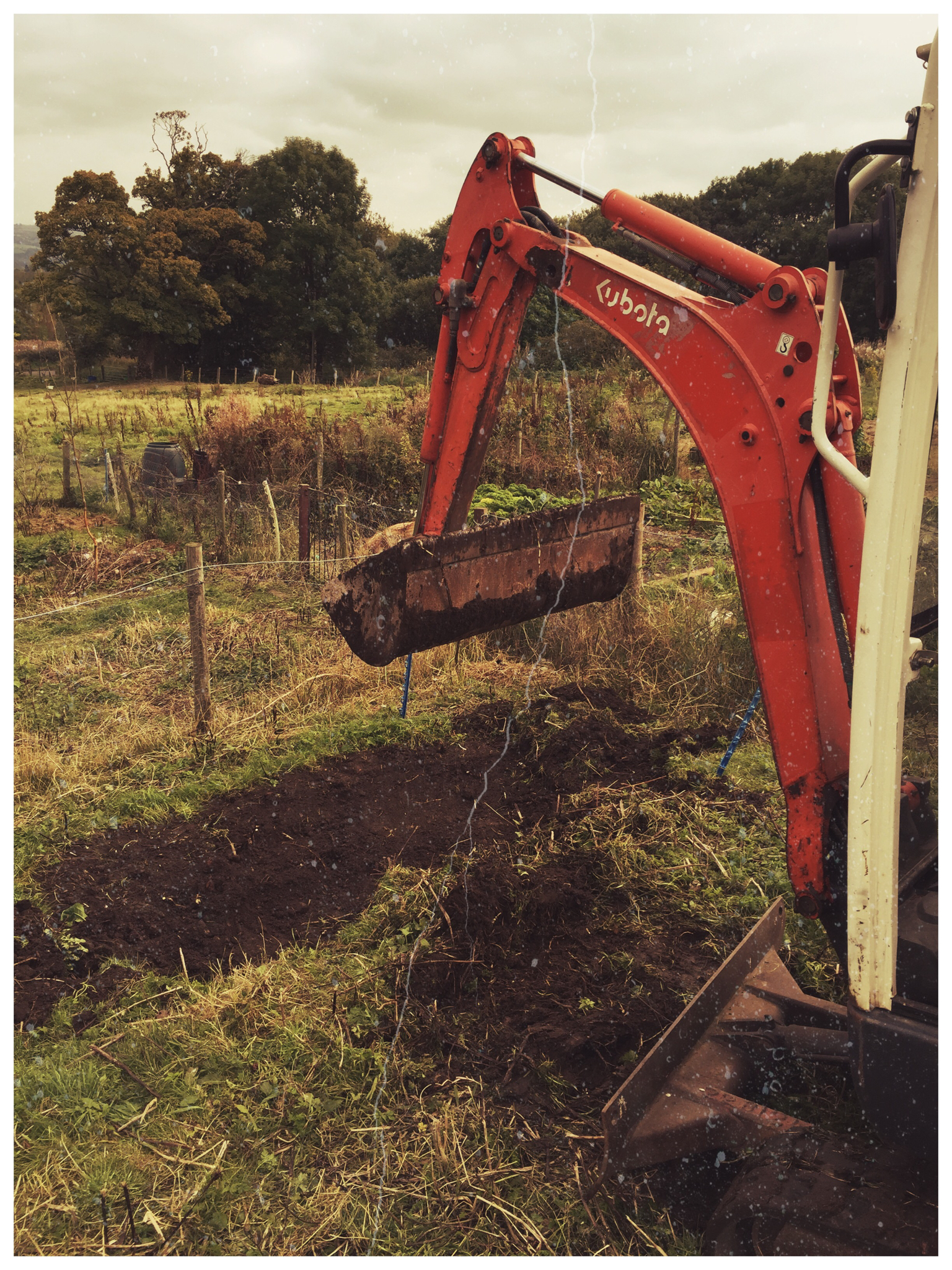 Realising the dream can you dig it the turkey shed for Digging ground dream meaning
