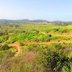 santiago-oaks-IMG_0439.jpg