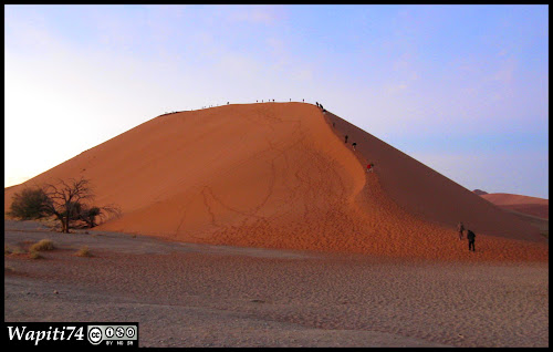 Balade australe... 11 jours en Namibie - Page 2 IMG_0760
