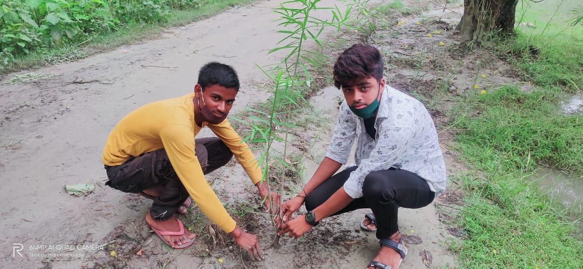 भारतीय वृक्षारोपण अभियान के अंतर्गत 25 बिहार बटालियन एनसीसी कैडेट बजरंग ने किया वृक्षारोपण