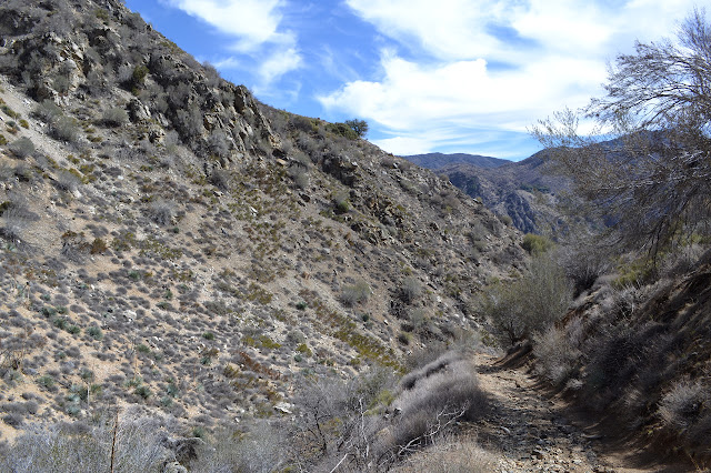a look down Trail Canyon