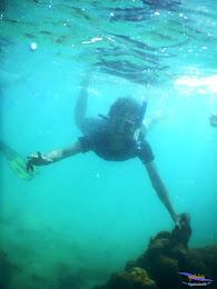 pulau pari, 23-24 mei 2015 27