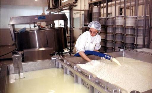 production-de-lait_858701_679x417.jpg