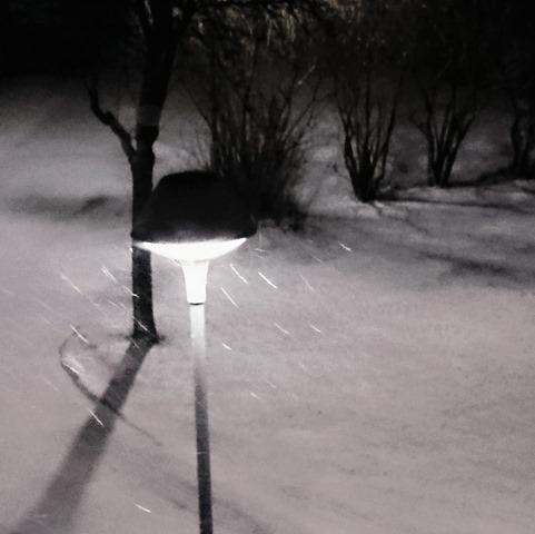 190108 snowstorm