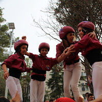 Actuació Festa Major Castellers de Lleida 13-06-15 - IMG_2123.JPG