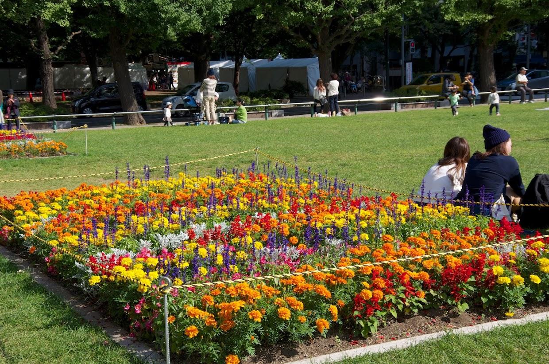 大通公園を飾る色鮮やかな花壇