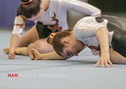 Han Balk Fantastic Gymnastics 2015-1747.jpg