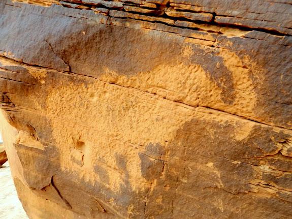 Moab Mastodon